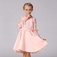 Djevojka je Jednobojni Izlasci Proljeće Ljeto Dugih rukava Haljina Pink