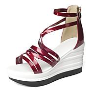 Feminino Sandálias Gladiador Sapatos clube Courino Primavera Verão Outono Casual Social Festas & Noite Gladiador Sapatos clubeZiper