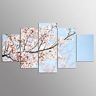 baratos -Estampados de Lonas Esticada Floral/Botânico Moderno,5 Painéis Tela Qualquer Forma Impressão artística Decoração de Parede For Decoração