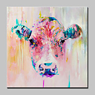 billige -Håndmalte Dyr Firkantet,Moderne Europeisk Stil Et Panel Lerret Hang malte oljemaleri For Hjem Dekor