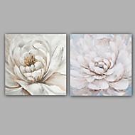 Håndmalte Blomstret/Botanisk To Paneler LerretHjem Dekor