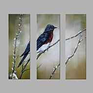 זול ציורי שמן-מצויר ביד בעלי חיים אנכי,אומנותי שלושה פנלים בד ציור שמן צבוע-Hang For קישוט הבית