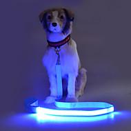 Koira Talutushihnat Strobe Turvallisuus Yhtenäinen Teryleeni Keltainen Punainen Vihreä Sininen Pinkki