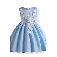 女の子の 誕生日 日常 祝日 ソリッド フラワー 刺しゅう コットン ドレス 冬 秋 ノースリーブ フローラル リボン パール ブルー