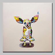 billiga Djurporträttmålningar-Hang målad oljemålning HANDMÅLAD - Djur Djur / Enkel / Moderna Inkludera innerram / Sträckt kanfas