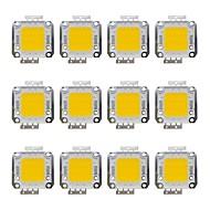billige belysning Tilbehør-12pcs 1600 lm Bulb Accessory Led Brikke Messing 20 W