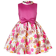 Kids / Toddler Girls' Active / Sweet Daily / Holiday Solid Colored / Floral / Color Block Print Sleeveless Above Knee Rayon / Polyester Dress Fuchsia