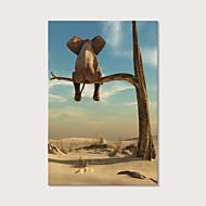 Estampado Estampados de Lonas Esticada - Animais Fotografia Modern Art Prints