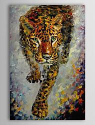 Pintados à mão Animal 1 Painel Tela Pintura a Óleo For Decoração para casa