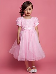 A-Line Knee Length Flower Girl Dress - Tulle Short Sleeves Scoop Neck with Ribbon