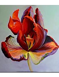 iarts®hand pintura a óleo pintado floral única flor vermelha com quadro esticado