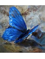 preiswerte -Handgemalte Leinwand-Malerei Schmetterling mit gestreckten Rahmen fertig zum Aufhängen