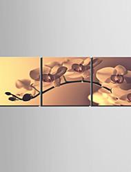 Strakt lærred Art Floral Tender Orchid Sæt med 3