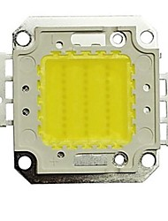 30w 2700lm 6000k cool white LED-Chip (30-35v)