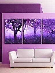 cheap -E-HOME® Stretched LED Canvas Print Art Purple Trees Flash effect LED Set of 3