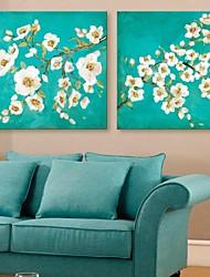 e-Home® tela fiori di arte insieme pittura decorativa di 2