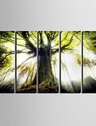 Недорогие -Пейзаж Modern, 5 панелей Вертикальная С картинкой Декор стены Украшение дома