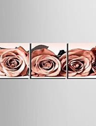 e-home® esticada arte da lona rosa da decoração conjunto de pintura 3