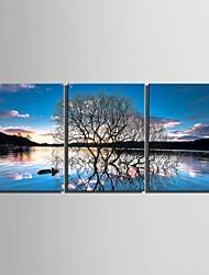 billige -Kanvas Sæt Landskab Blomstret/BotaniskTre Paneler Vertikal Kunsttryk Vægdekor For Hjem Dekoration