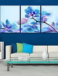 cheap -E-HOME® Stretched Canvas Art Blue Flowers Decoration Painting Set of 3