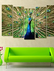 e-home® lona esticada arte pavão conjunto pintura decorativa de 5