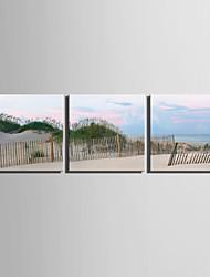 abordables -e-HOME estiró arte de la playa junto al mar Sistema de la pintura decorativa de la lona de 3