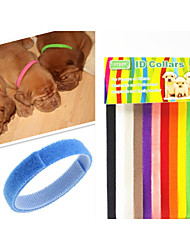 cheap -Dog Collar Pet Puppy ID Collars Adjustable/Retractable Velcro Rainbow 12 Colors Multicolor Nylon