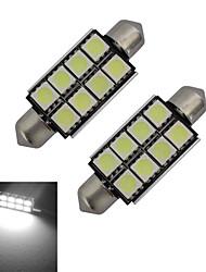 abordables -2pcs 150-170lm Guirlande Lampe de Décoration 8 Perles LED SMD 5050 Blanc Froid 12V
