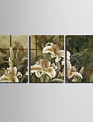 e-home® allungato su tela set pittura giglio decorativo di 3