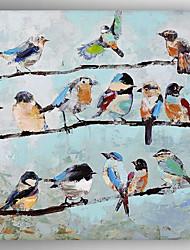 abordables -Peint à la main Animal Carré,Traditionnel Un Panneau Toile Peinture à l'huile Hang-peint For Décoration d'intérieur