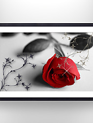 cheap -VISUAL STAR®Picture Frame Rose Flower Paper Print Art Covered with Glass Ready to Hang