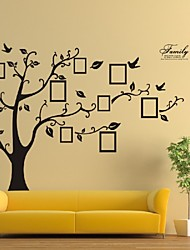 cheap -Photo Tree Frame Family Forever Memory Tree Wall Decals Zooyoo Removable Pvc Wall Sticker Home Decoration Diy