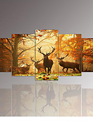 cheap -5 Panel Wall Art,The deer,Painting Pictures Print On Canvas,The Picture For Home Modern Decoration piece