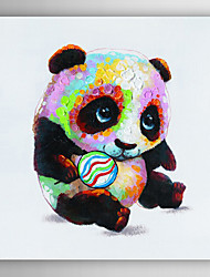 Hand Painted Oil Painting Animal Panda Playing with Ball with Stretched Frame