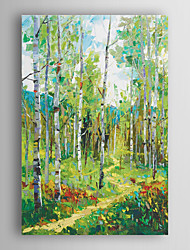 Hand Painted Oil Painting  Landscape Abstract Spring Trees with Path with Stretched Frame 7 Wall Arts®