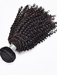 Menneskehår Brasiliansk hår Menneskehår, Bølget Kinky Krøller Paryk med krøller Hår Ekstensions 1 Stykke Sort