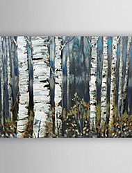 cheap -Hand Painted Oil Painting  Landscape Gray Birch Trees with Stretched Frame 7 Wall Arts®