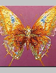 abordables -peintures à l'huile de papillon des animaux peints à la main sur l'image toile d'art moderne mur avec cadre étiré prêt à accrocher