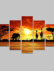 cheap -Hand-Painted Modern Abstract Elephant Giraffe Sunset African Landscape Oil Painting on Canvas  5pcs/set No Frame