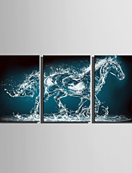 E-HOME® Stretched Canvas Art Water Horse Decoration Painting  Set Of 3