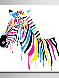 cheap -E-HOME® Stretched Canvas Art Colored Zebra Decoration Painting  One Pcs