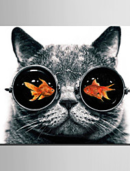 cheap -E-HOME® Stretched Canvas Art Goldfish in The Eyes of The Cat Decoration Painting  One Pcs