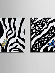 E-HOME Stretched Canvas Art Zebra Pattern Insect Decoration Painting  Set Of 2