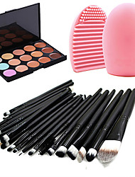 preiswerte -20 teiliges Profi Make-up-Set / Puder Foundation / Eyeliner, Lippenstift Make-up Pinsel Set + 15 Farben Concealer + Pinselreiniger