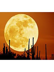 Недорогие -перезаряжаемые 3d печать луны водить ночи свет - белый lightwarm белый свет