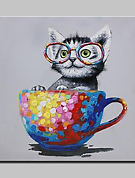 cheap -Hand-Painted Naughty Cat Animal Oil Painting On Canvas Modern Abstract Wall Art Pictures