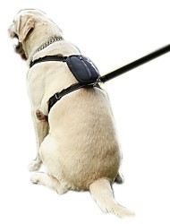 High Quality Reflecting Nylon Pets Harness for Pets Dogs