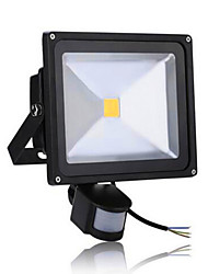 AC85-265V 50W Cold White / Warm White 5000LM Infrared Human Body Induction LED Floodlight 1Pc