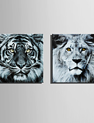 cheap -E-HOME Stretched Canvas Art Tiger and  Lion Decoration Painting  Set of 2