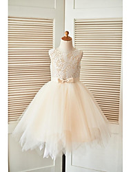 cheap -A-Line Knee Length Flower Girl Dress - Lace Tulle Sleeveless Scoop Neck with Sash / Ribbon by LAN TING BRIDE®